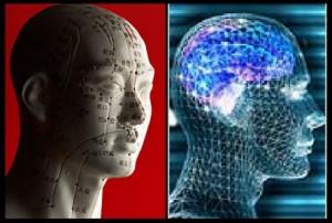 Acupressure-brain 1