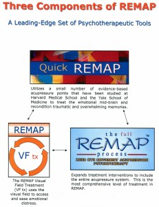 Quick REMAP | full REMAP process | REMAP VF tx